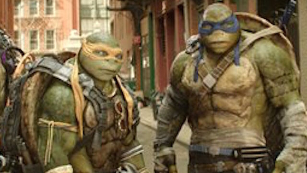 'Turtles' wins box office with low numbers