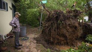 storm damage Turtle Lake july 20