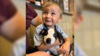 2-year-old boy born with cleft lip adopts puppy born with same condition