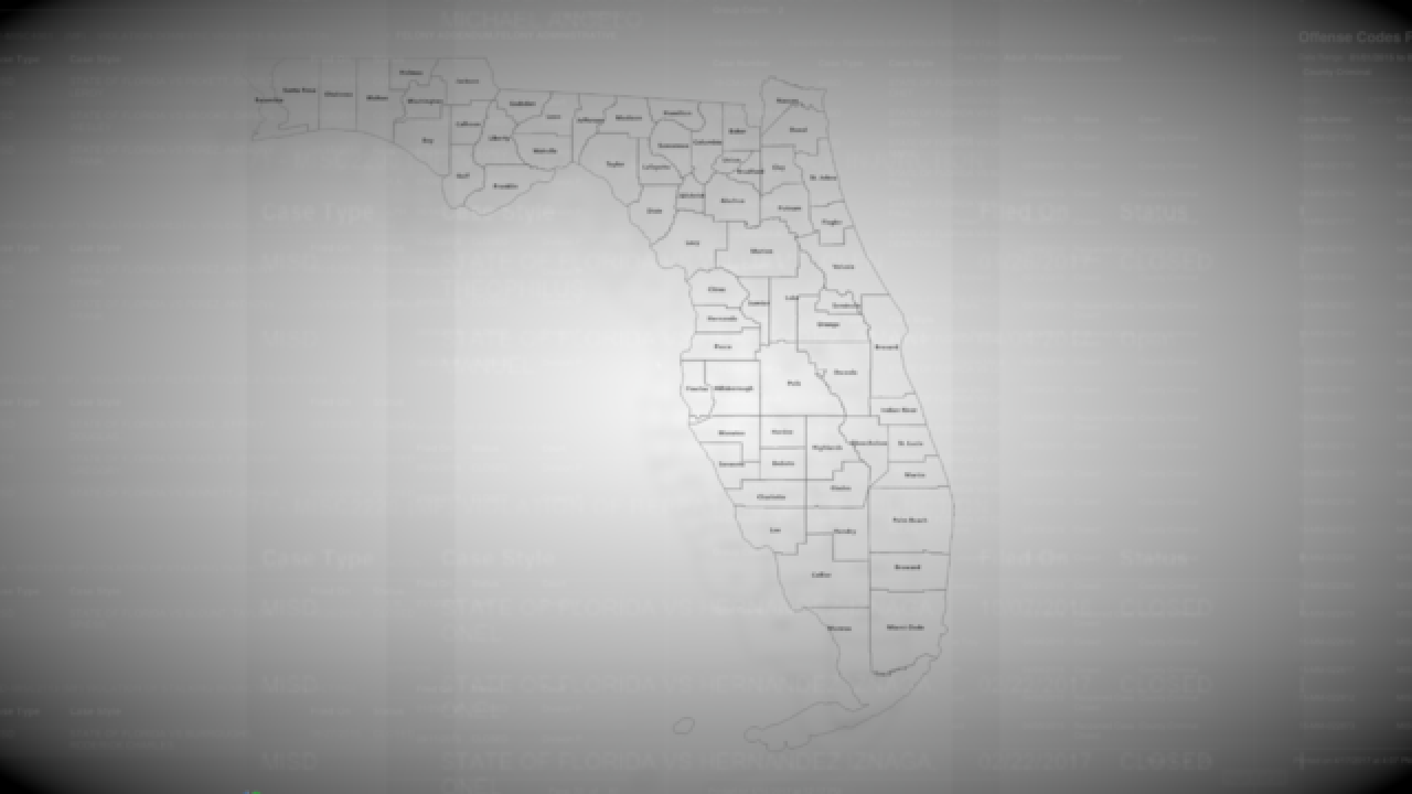 Alarming truth about Florida's gun law created to protect domestic abuse victims