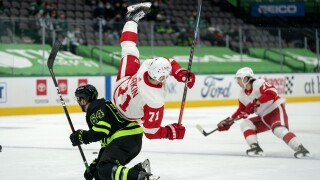 Dylan Larkin Red Wings Stars Hockey