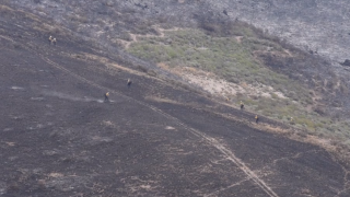 Rancho Fire on Vandenberg AFB fully contained