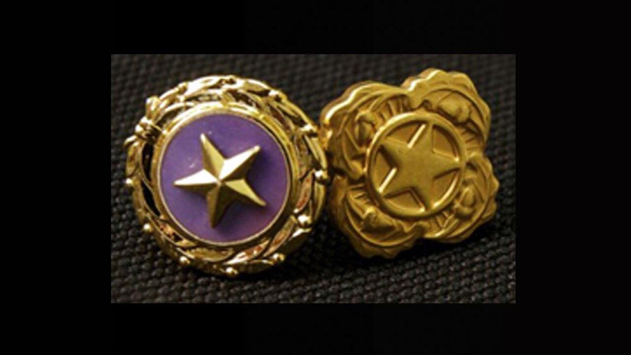 wptv-gold-star-.jpg