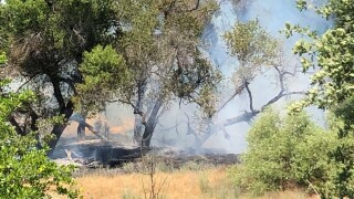 paso riverbed fire 2.jpg