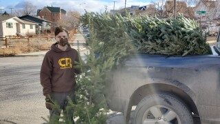 Boy Scout Christmas Tree