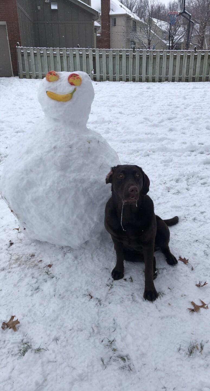 Annabella in the snow.jpg