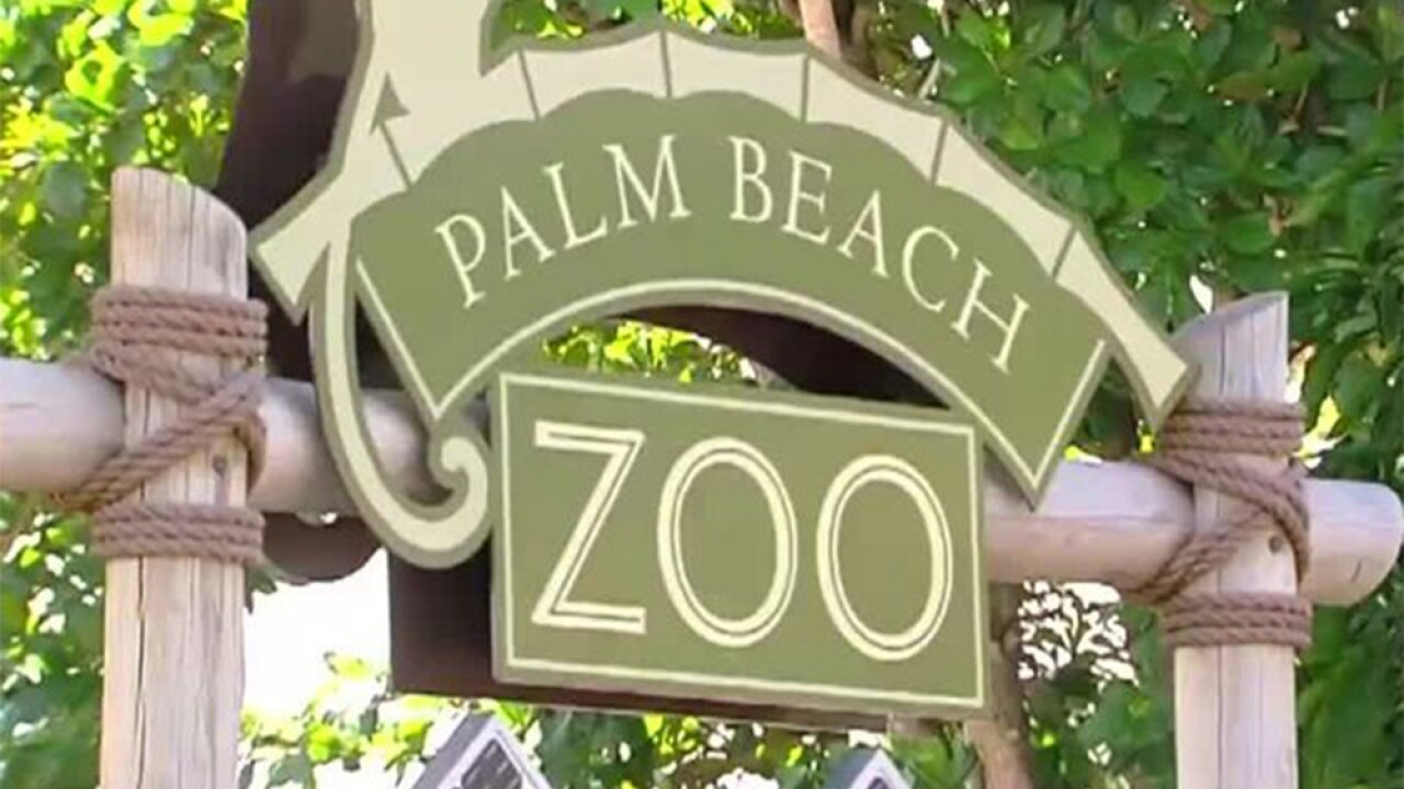 WPTV-PALM-BEACH-ZOO.jpg