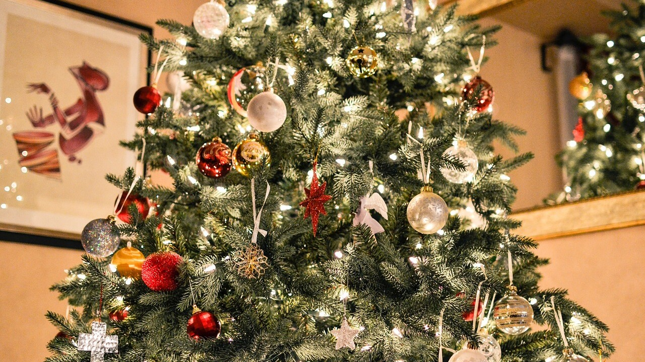 Where to recycle your Christmas tree in Henderson