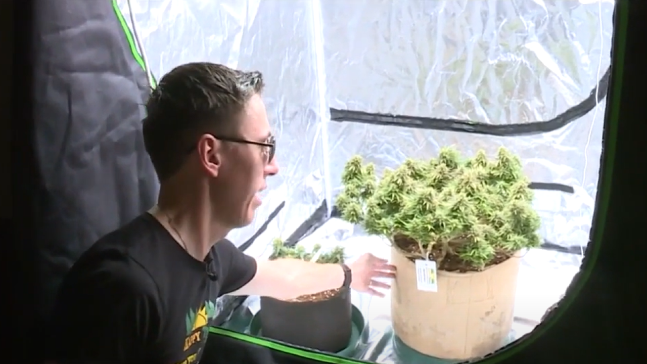 Chesterfield man hopes to ease fears for Virginians interested in growing marijuana