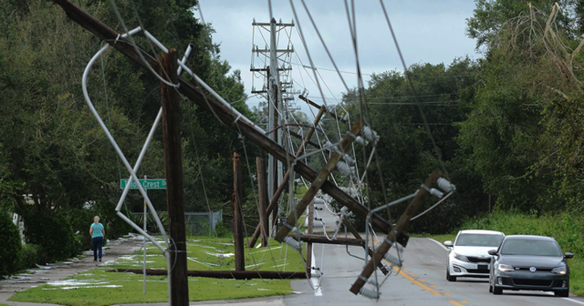 What to do if you see a downed power line after stormy weather in Florida