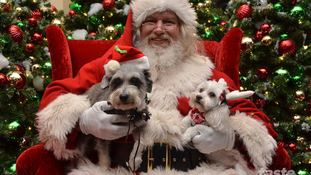 5+ fun things to do this weekend (Dec 1 - 3)