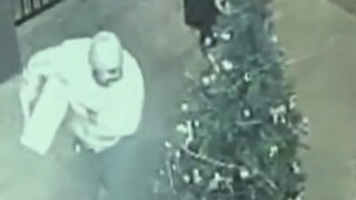 2 'Grinches' steal a restaurant's Christmas tree on camera