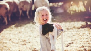 Germ safety at fairs, farms, and pettingzoos