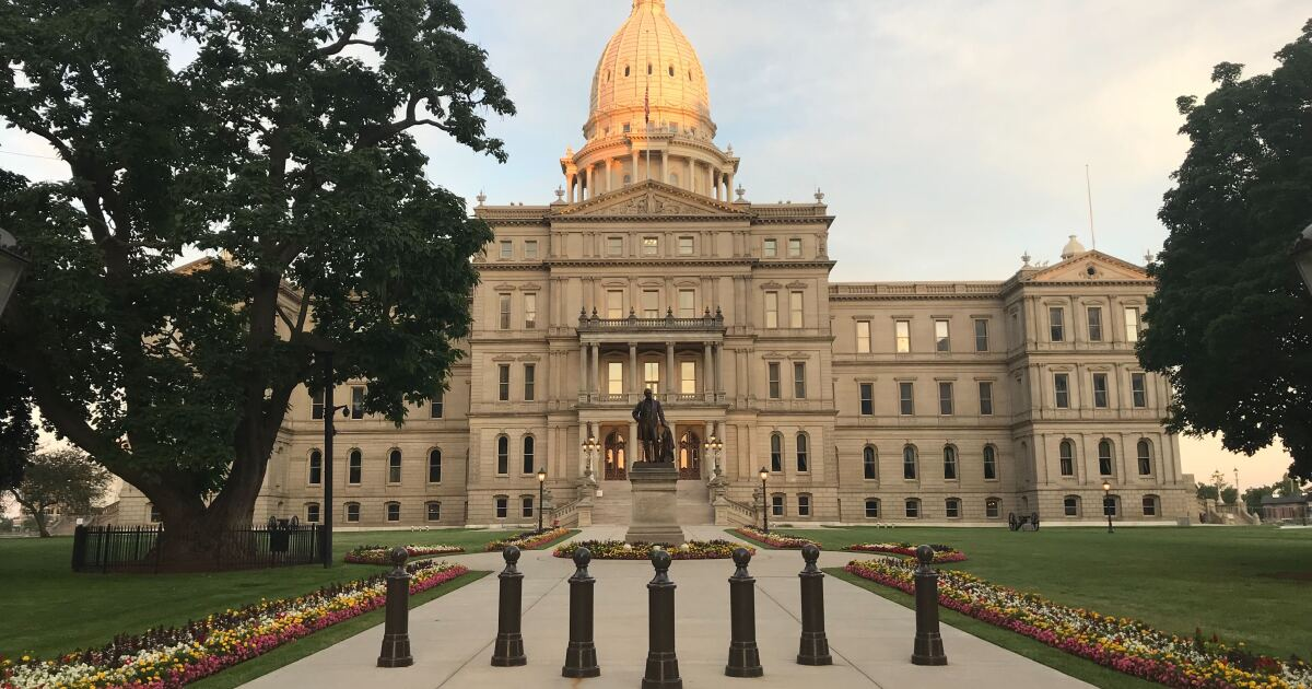 Michigan House representative introduces bipartisan plan to improve healthcare