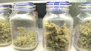 First pot dispensaries coming to Lake Worth