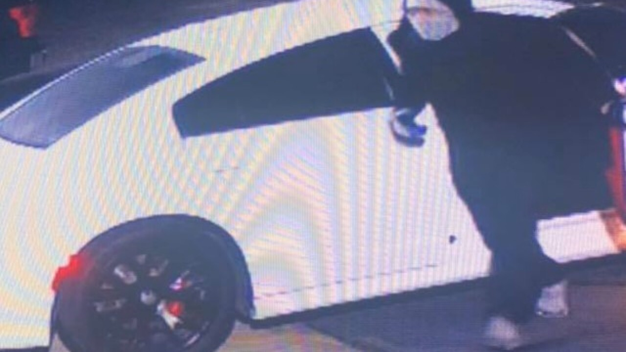 Thieves target local car dealerships