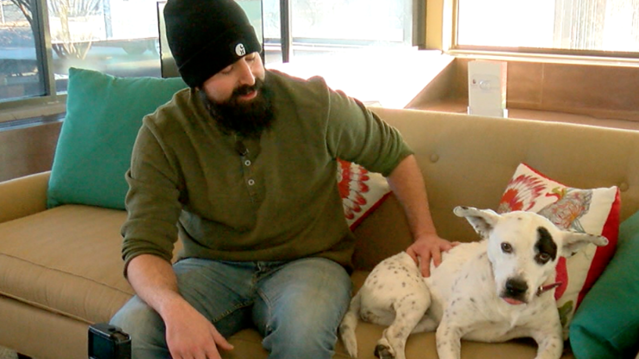 Within 1 week, Denver man's dog was lost, stolen, sold and returned