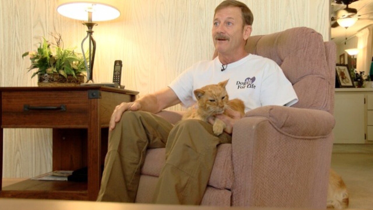 Cat lost in Martin County during 2004 hurricane reunites with owner after 14 years