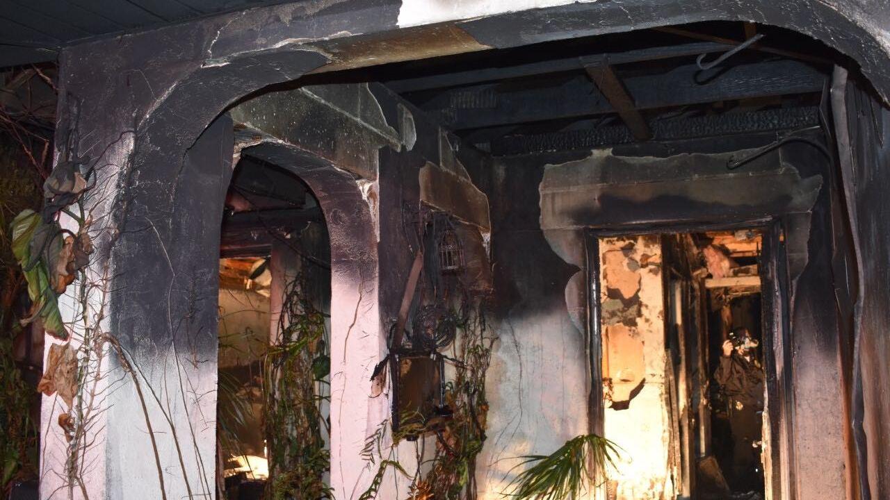 Wellington Avenue fire 12-11-18 4.jpg