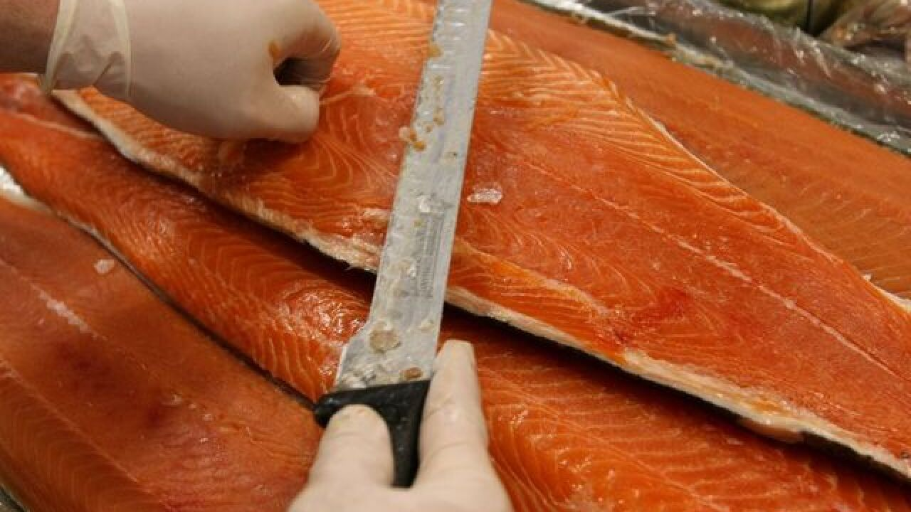 FDA OKs genetically modified salmon for human consumption