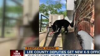 New K-9 officer for Lee County