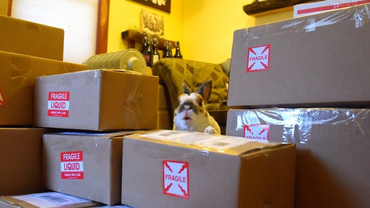HOLIDAY HAZARD! How to avoid package theft