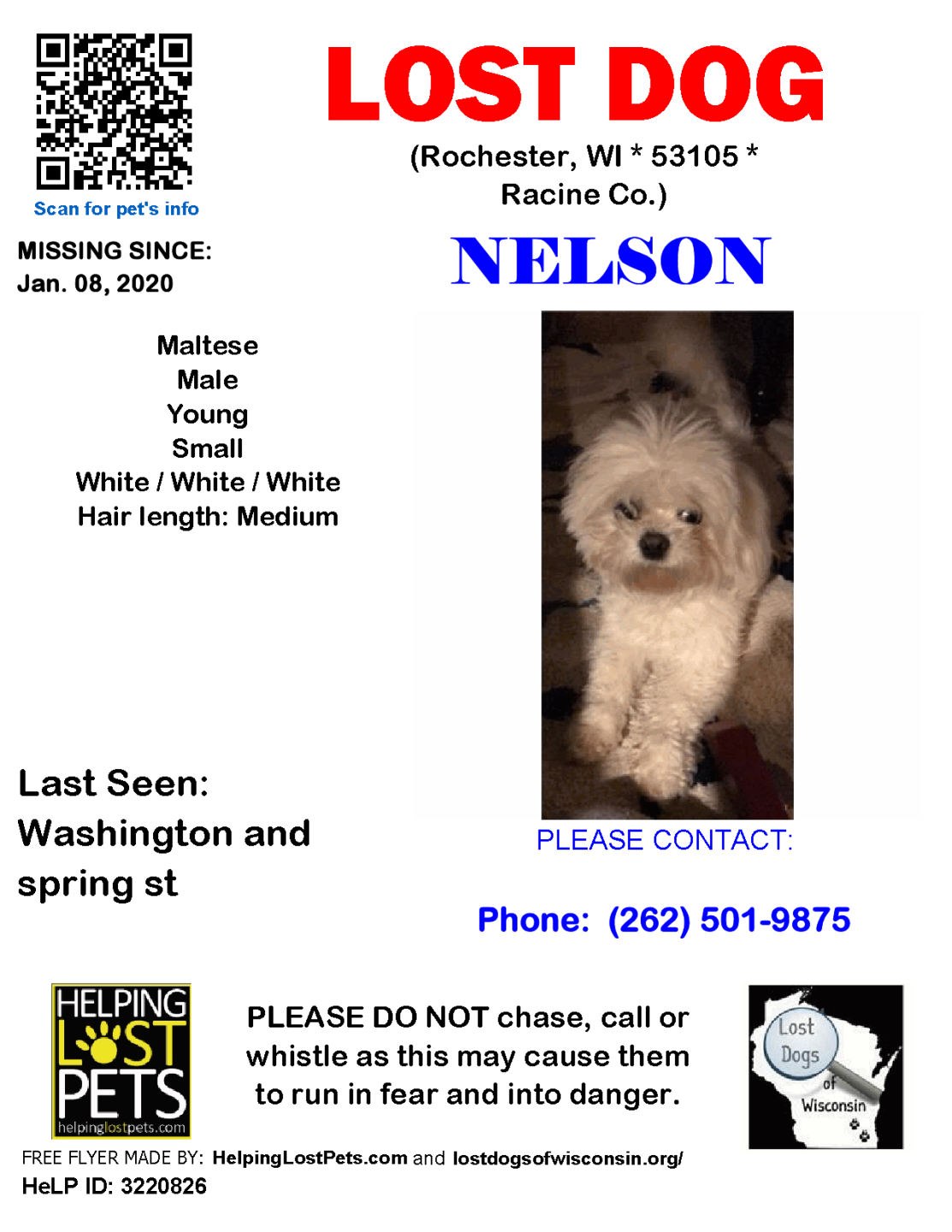 0108 Nelson Maltese Young.png