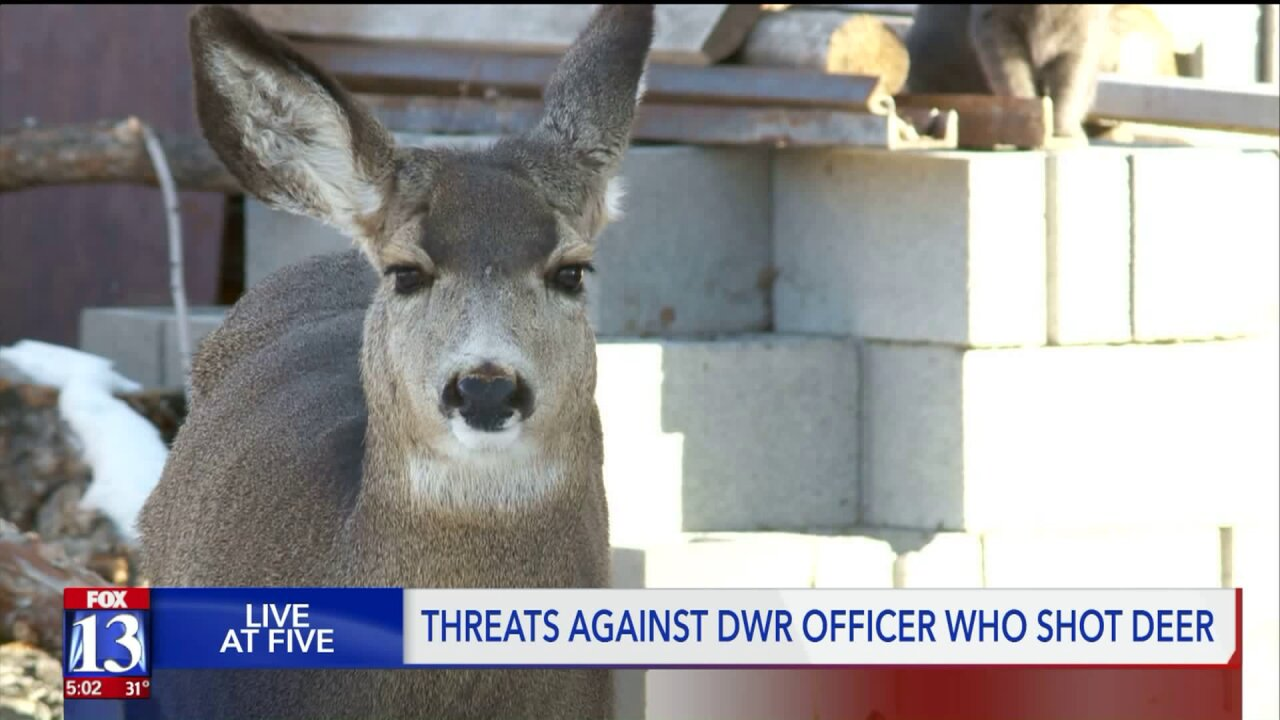 Violent threats made against DWR officer who shot domestic deer