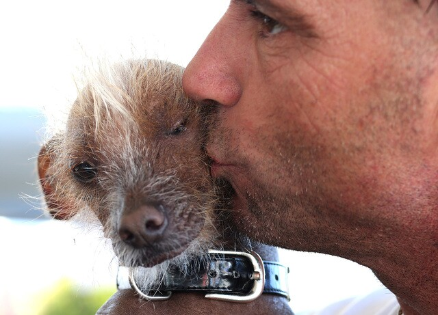 Photos: The World's Ugliest Dog contestants and winners over the years
