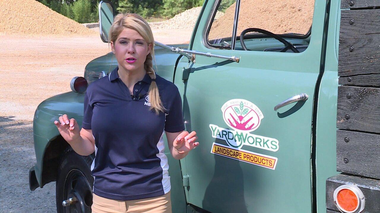Buckle up! Nikki-Dee drives a Yard Workstruck