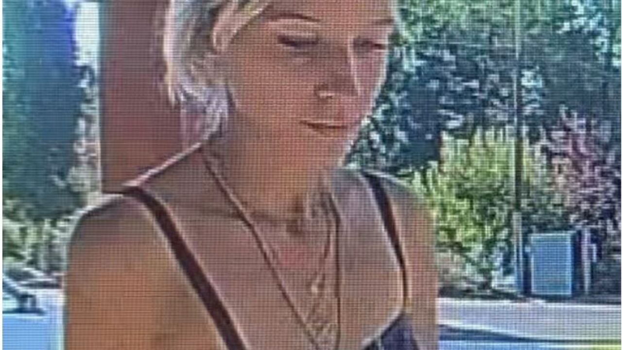 Holladay package theft suspect
