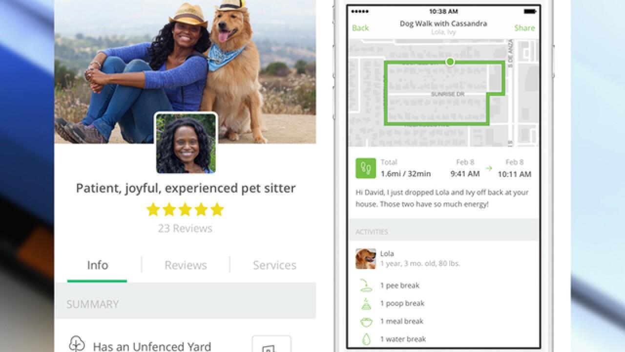 Rover Com Expands On Demand Dog Walking Service To Denver