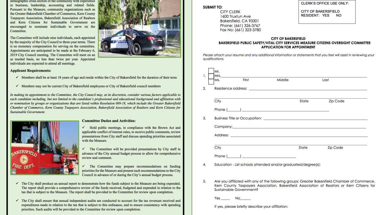 OVERSIGHT COMMITTEE APPLICATION
