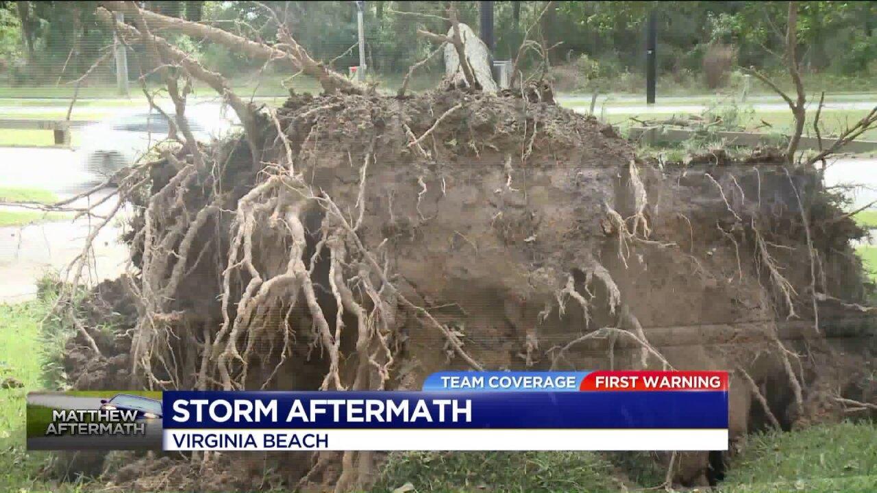 Hurricane Matthew leaves damage in VirginiaBeach