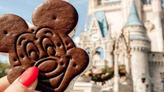 You Can Now Buy Disney's Mickey Mouse Ice Cream Sandwiches Outside The Parks