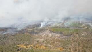 10-5-20 mullen fire.jpg