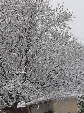 Snow in Wisconsin: November 9th, 2018