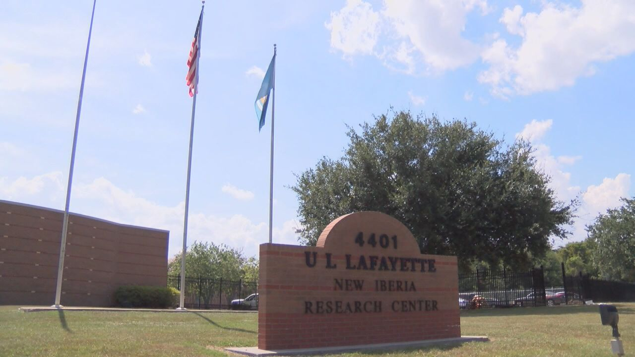 UL's research brings jobs to Acadiana