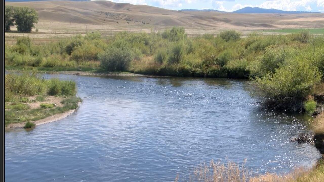 Fish kill found in Clark Fork River west of Butte