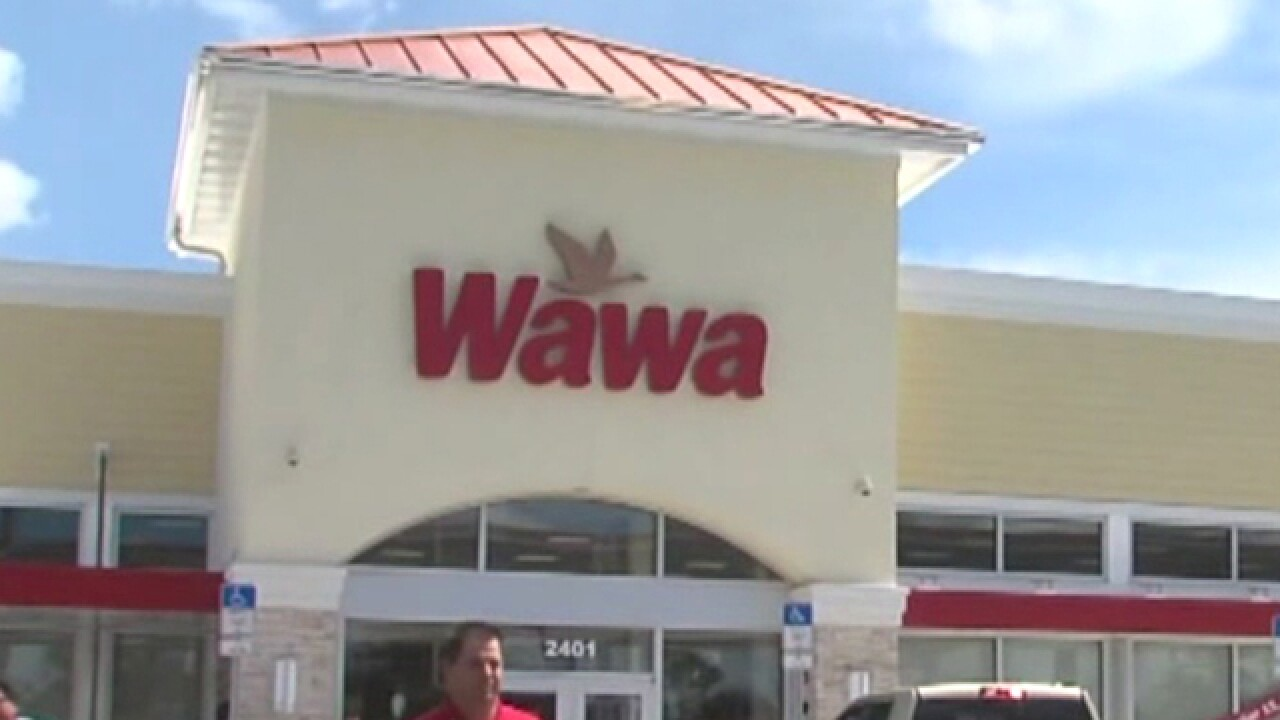 Wawa opens Thursday in Stuart, fans get preview
