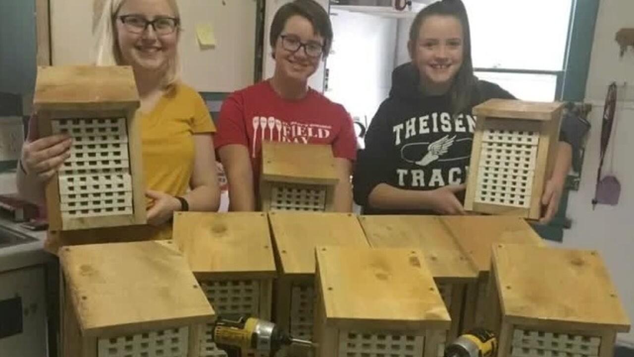 Local teen earns Girl Scouts' highest award