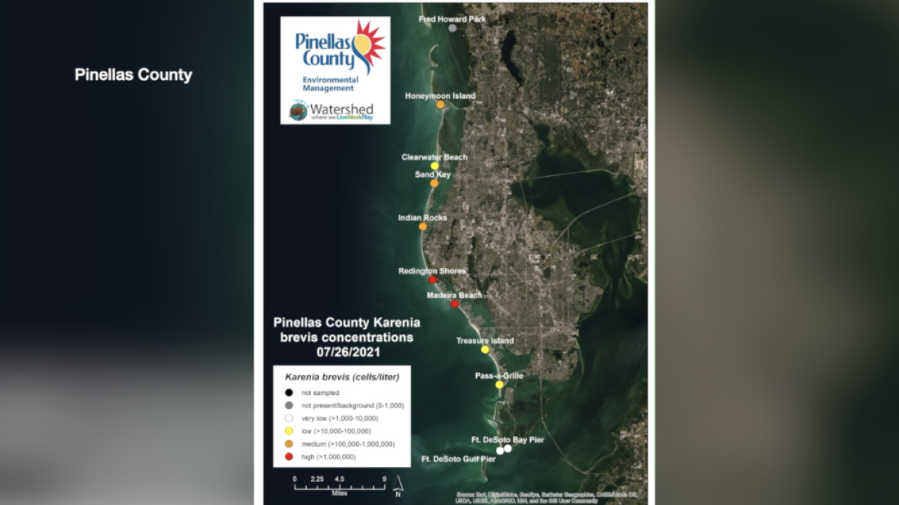 red tide-pinellas.png