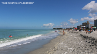 VENICE-FLORIDA-MUNICIPAL-GOVERNMENT.png