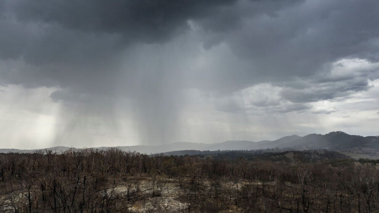 Rain brings relief — and a few new concerns — for fire-ravaged Australia