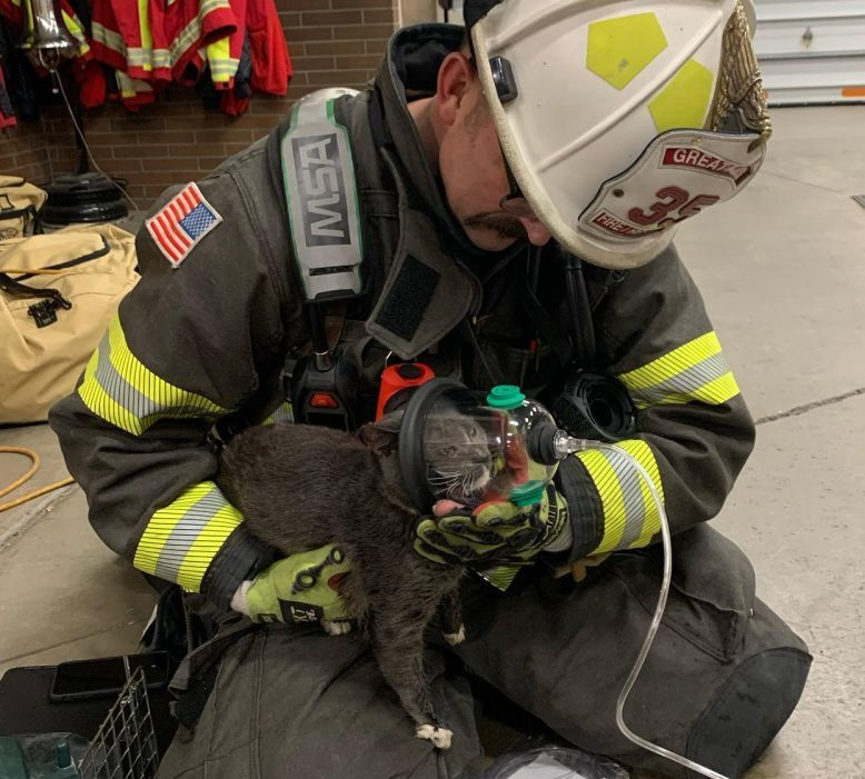 Great Falls Fire Rescue helps pets breathe easier after a fire