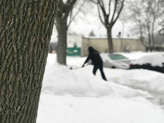 snow25.jpeg
