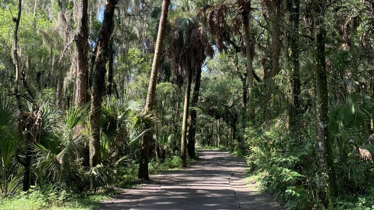 Alderman-Ford-Conservation-Park.png