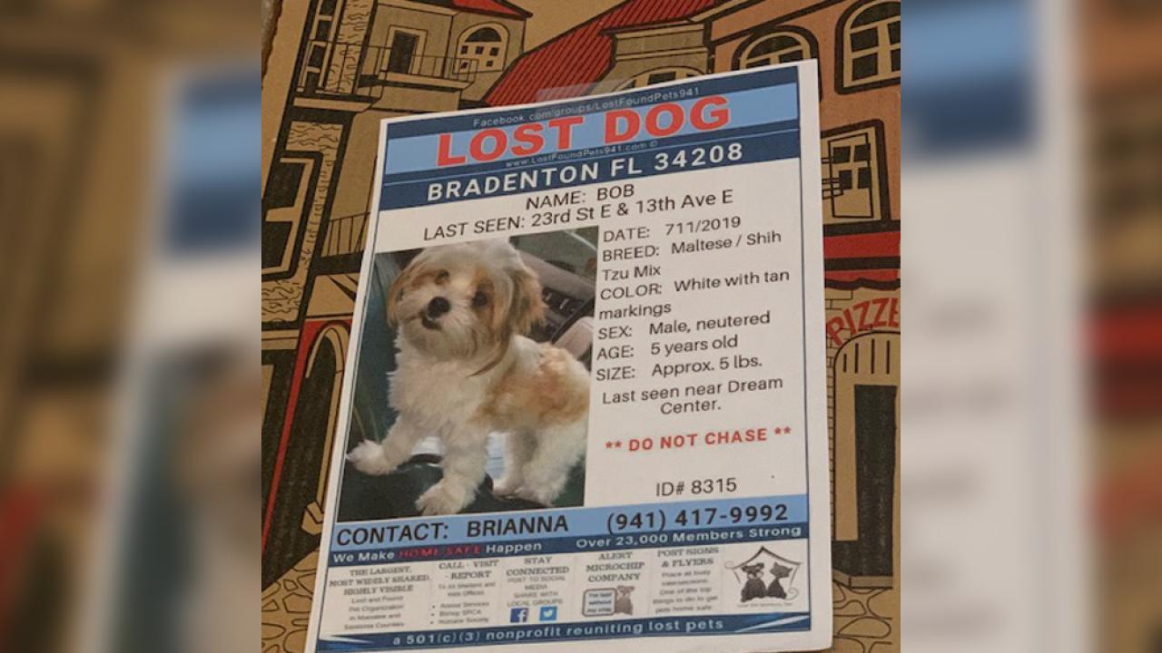 pizza-dog-flyer.png