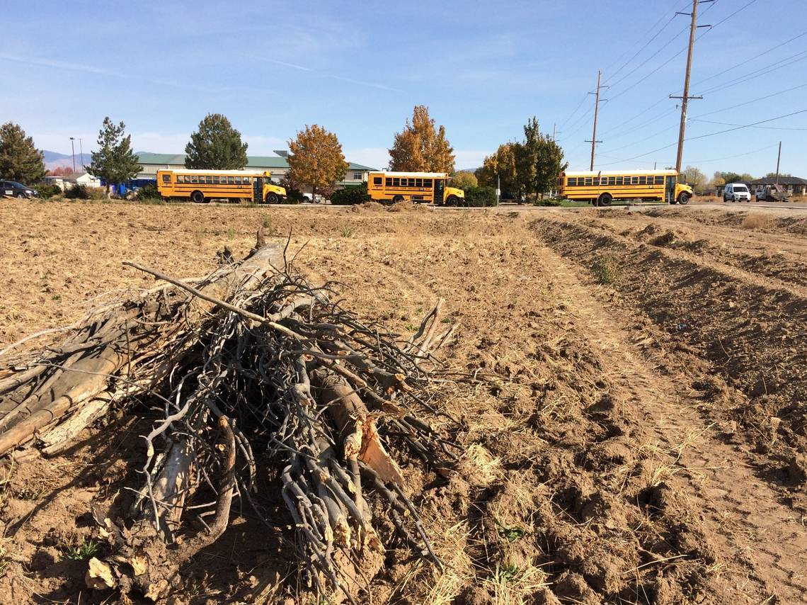 Brush cleared at Amazon delivery station site on Franklin Road in west Meridian 10-23-20 cropped.jpg