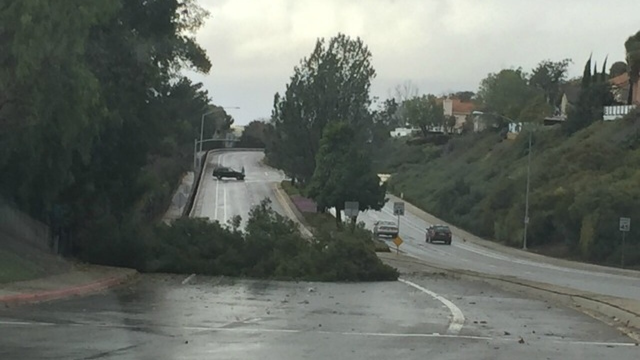 Oceanside tops list of high wind totals